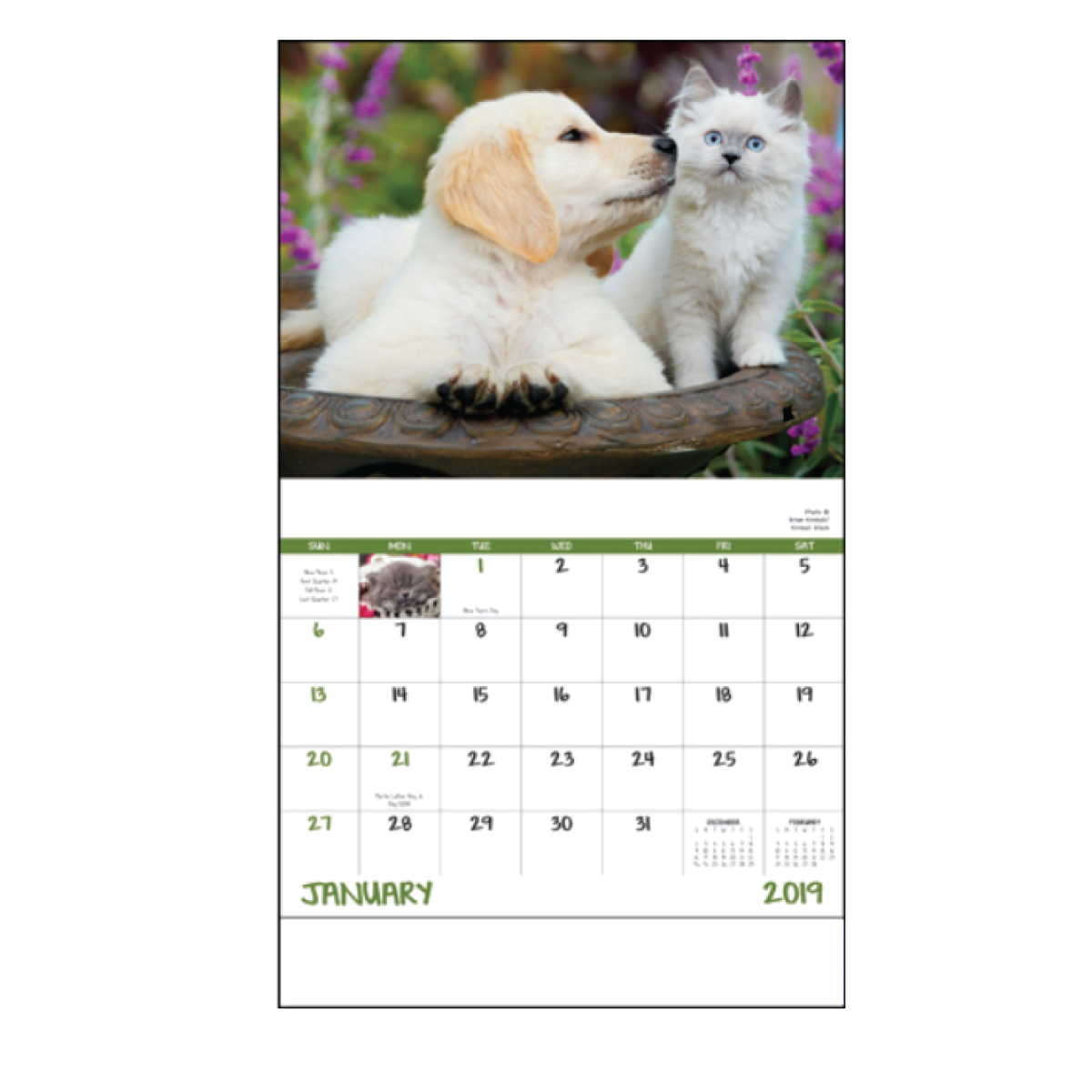 Full Color Process 1 Location Puppy & Kitty Calendar