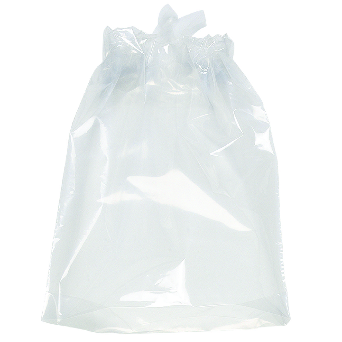 Clear Poly-Draw Bag (9.5Wx12H)